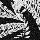 Feathers Lost In Flight by Deborah Lazarus