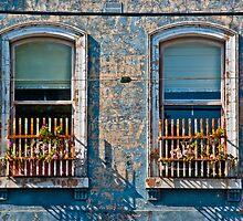 Flemington windows by mrjaws