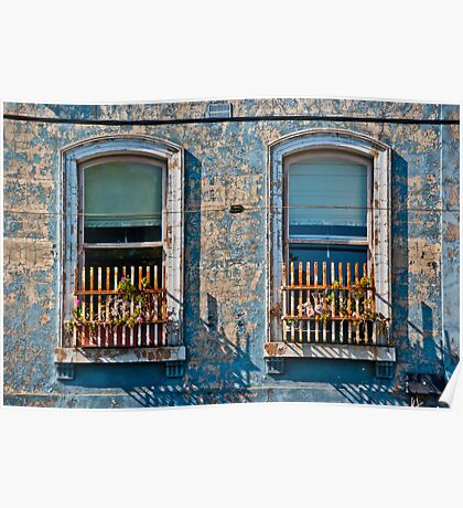 Flemington windows Poster