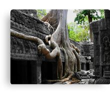 The Roots Of Life Canvas Print