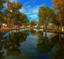 Desert Springs Campground by Michael  Gunterman