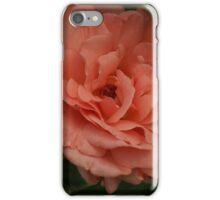 Peach of A Rose iPhone Case/Skin