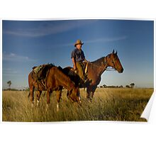 Pic Willetts - Packhorse Drover Poster