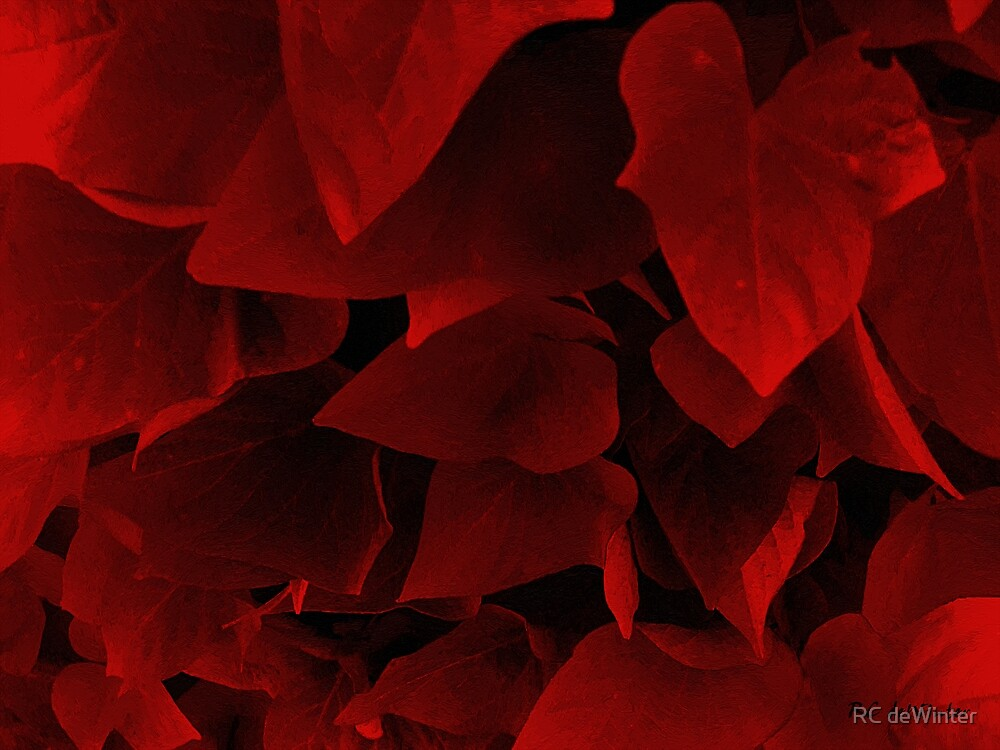 Hearts of Darkness by RC deWinter