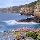 Cornish Cliffs by Swell Photography