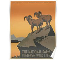 WPA United States Government Work Project Administration Poster 0941 The National Parks Preserve Wild Life Poster