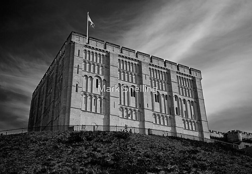 Norwich Castle by Mark Snelling