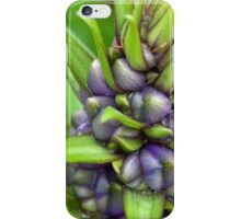 Blue Ginger iPhone Case/Skin
