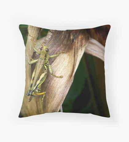 Lazy Day in the Garden Throw Pillow