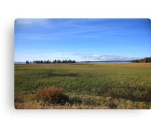Yellowstone National Park - Landscape Canvas Print