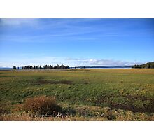 Yellowstone National Park - Landscape Photographic Print