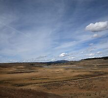 Yellowstone Landscape by Frank Romeo