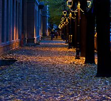 Love Lights,Sassuolo,Italy. by Davide Ferrari