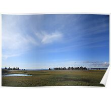 Yellowstone National Park - Landscape Poster