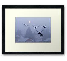 Gathering Crows Framed Print