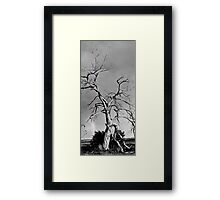 Spirit Tree Framed Print