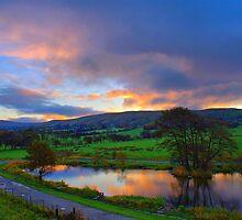 Dawn At The Carp Lake by Sandra Cockayne