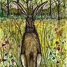 The Evasive Hare by Elle J Wilson