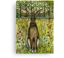 The Evasive Hare Canvas Print