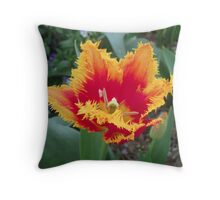 Tulip Time in Australia 2 Photograph  Throw Pillow