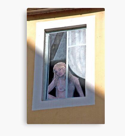 Faux Window Canvas Print