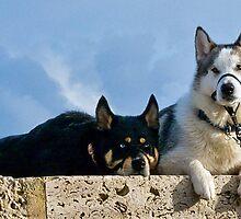 Mal and Misha by Susie Peek