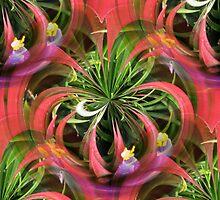 Flower Circles in Pink Green Purple by Judi FitzPatrick