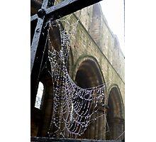 Jewelled Web Photographic Print