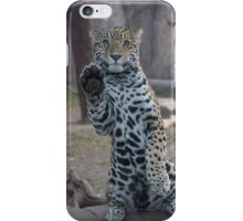 Paws Up! iPhone Case/Skin