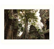 Strangler Figs & Ruins - Ta Prohm, Cambodia Art Print