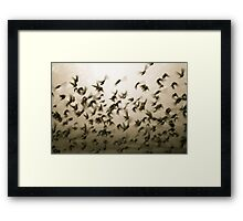 when the light comes... Framed Print