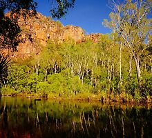 Kakadu Billabong by D-GaP
