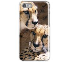 Cheetahs -- Two Brothers Together iPhone Case/Skin