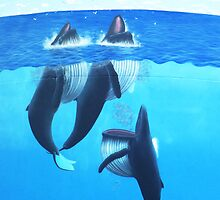 """Woopi Whales' by debsphotos"