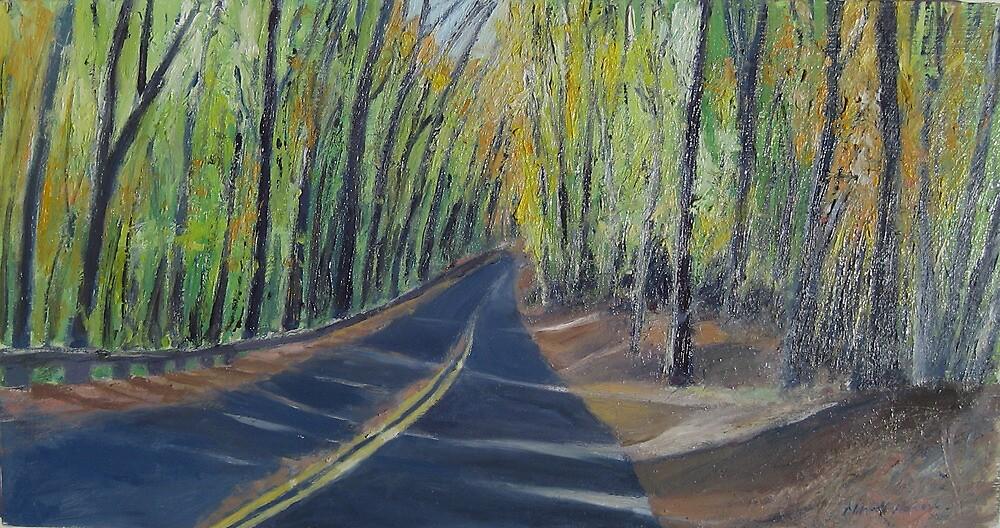 Wise Road in Rock Creek Park by Marcie Wolf-Hubbard