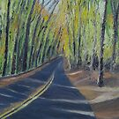 Wise Road in Rock Creek Park by Marcie Wolf-Hubbard