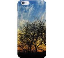 Sunset and Silhouettes iPhone Case/Skin