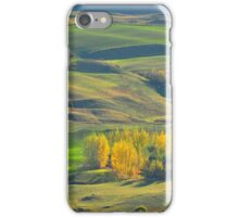 The View from Crown Range Road iPhone Case/Skin