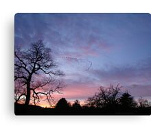 Migration of The Flock Canvas Print