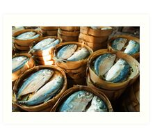 Fish in Baskets - Vientiane, Laos Art Print