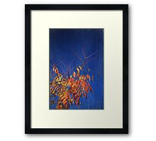 And The Skies Will Be Blue Framed Print