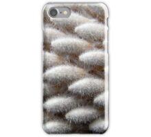 white banksia I iPhone Case/Skin