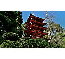 Japanese Tea Garden Photographic Print