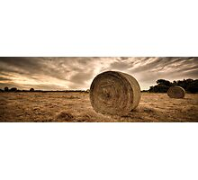 ∞ Field of Dreams ∞ Photographic Print