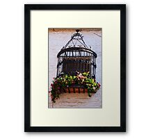 windowcage Framed Print