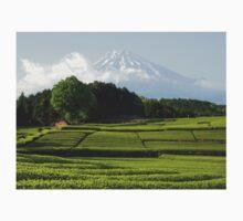 Green tea plantation and Fujisan One Piece - Long Sleeve