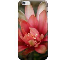Cactus Flower iPhone Case/Skin
