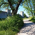 Spring walk around Visby  by jayview