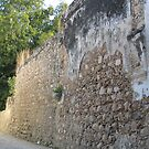 Village Wall Detail by waddleudo
