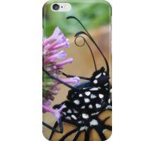 Monarch Butterfly - Breakfast I iPhone Case/Skin